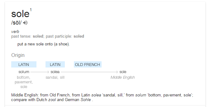 Sole definition google