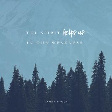 Romans 8-26 2